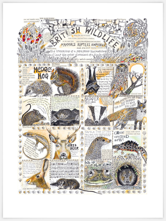 British Wildlife, a print (c) Fiona Willis 2016