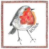 Robin  copyright Fiona Willis Artwork