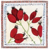 Rosehips coyright Fiona Willis Artwork