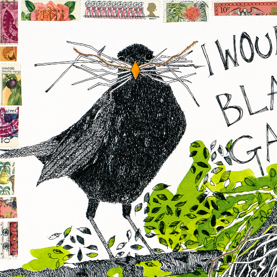 Blackbirds - a print by Fiona Willis (c) Fiona Willis