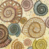 Fossils, a card by Fiona Willis