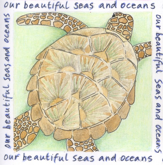 Seas & Oceans Turtle, a design by Fiona Willis