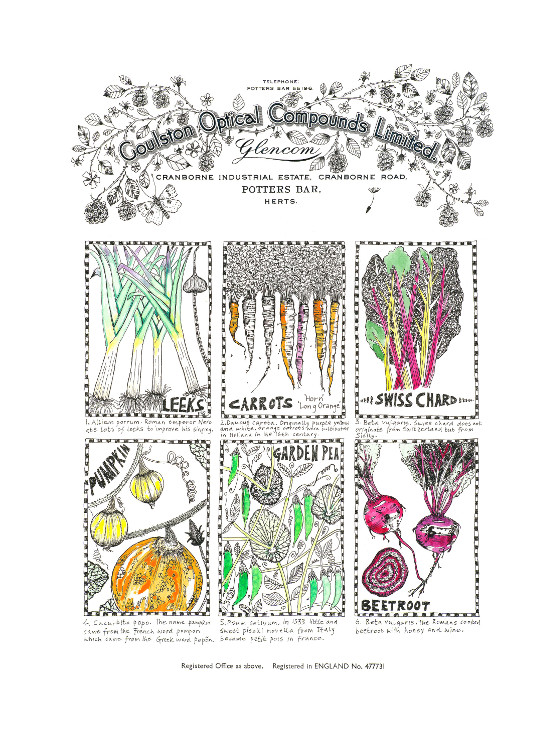 Vegetable Histories, a print by Fiona Willis (c) Fiona Willis 2015